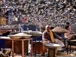Фотограф Мерисса Куек - фото продавца зерна в Джайпуре, Индия