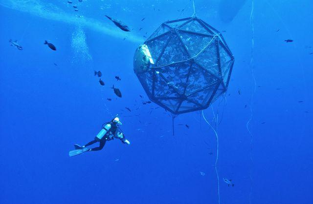 Мобильная рыбная система