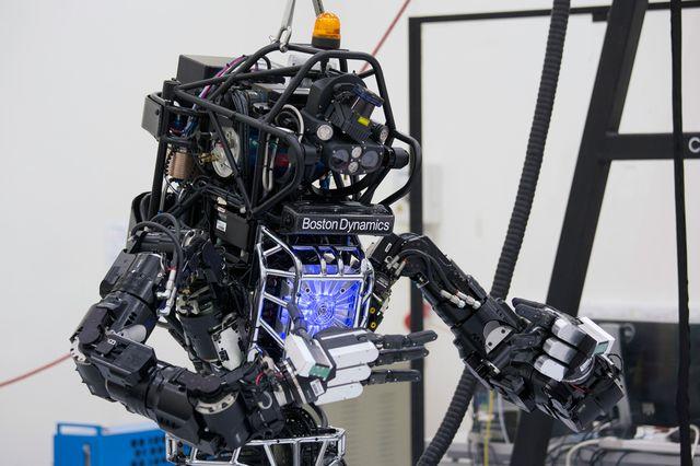 Самые интересные и полезные роботы мира