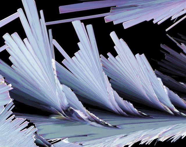 Кристаллические образования сульфосалициловой кислоты - химического вещества, используемого в медицине (200x)