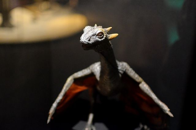 Модели драконов Дейнерис Таргариен
