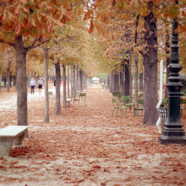 autumn-paris-16_1