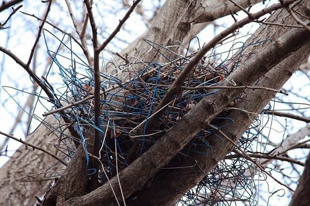 crow-nest-hanger-4[2]