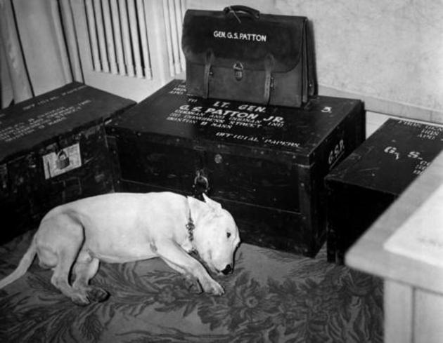 historical-photos-rare-pt2-general-george-s-patton-dog