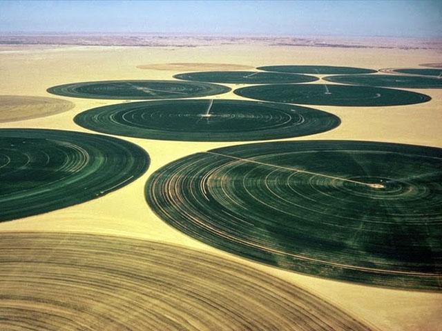 wadi-rum-farming-5[5]