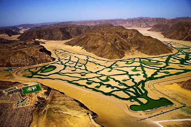 wadi-rum-farming-6[1]