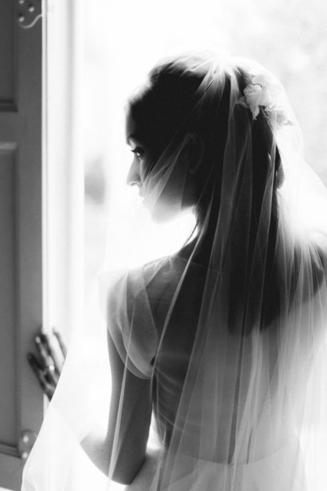 6 weddings - xavier navarro