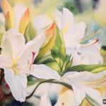 Коллекция акварелей от Марни Вард: любовь к цвету и цветам в одной картине