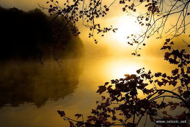 beautiful-nature_029