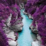 Поразительные фотографии природы: 14 снимков