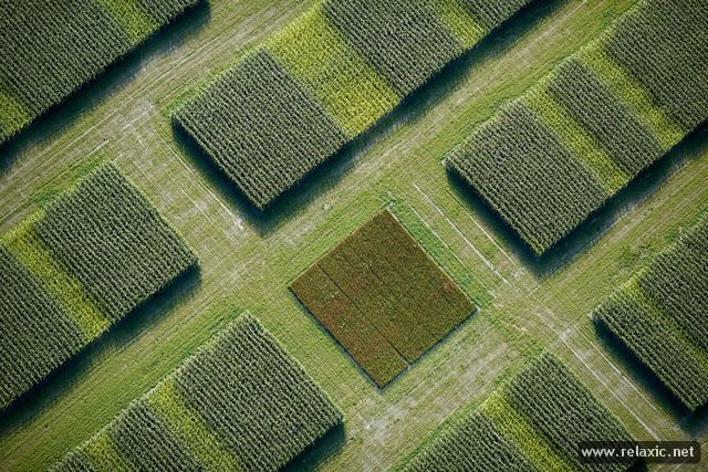 Aerial_Photography_004