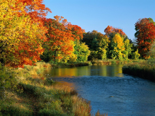 River-Credit-River-Ontario-Canada-nature-wallpaper-_1