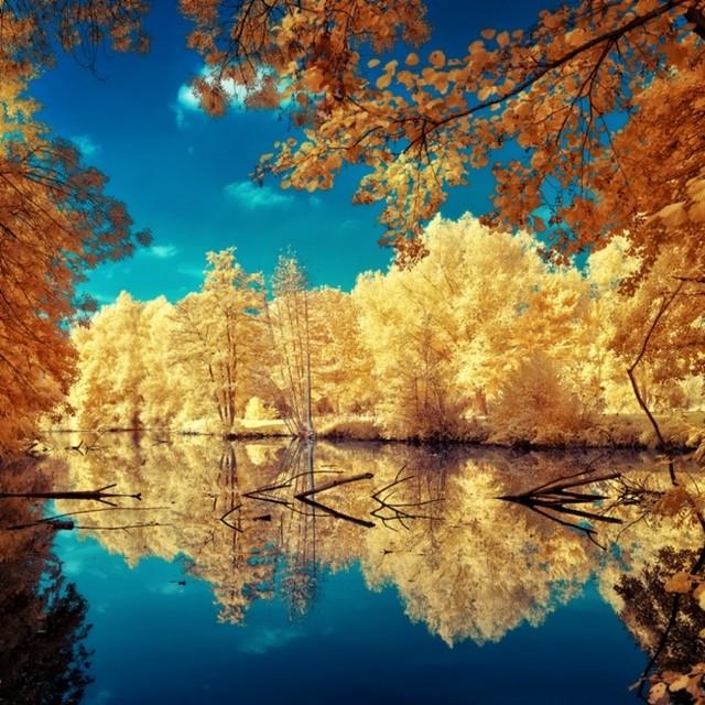 Пейзажи отраженные в воде красота