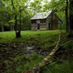 Фото-подборка домиков в лесу