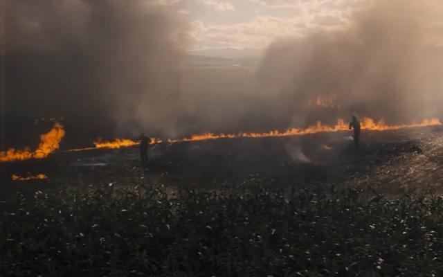Экологическая катастрофа на Земле