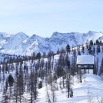 Современное шале в Альпах, или Когда в гости приходит лиса