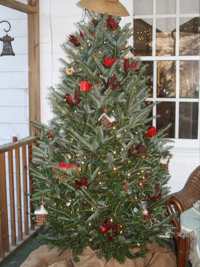RMS_My-passion-Christmas-Tree-Garden-Inspired_s3x4.jpg.rend.hgtvcom.1280.1707_1